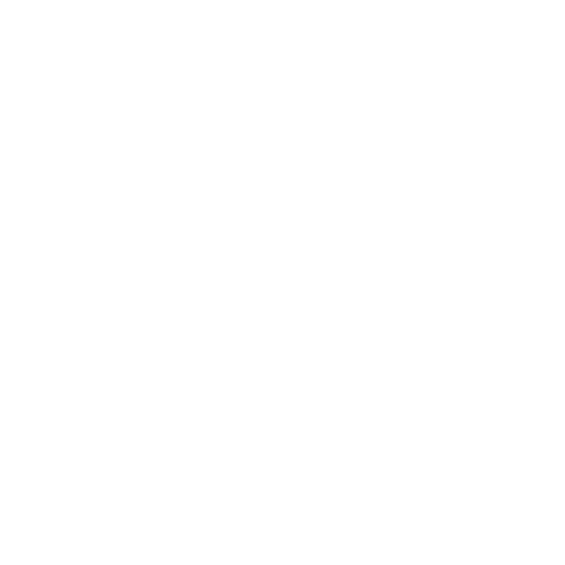 Single Disc